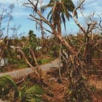 Hurricane Charley 10 Year Anniversary: Australian Pines On Captiva Drive