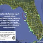 Sanibel & Captiva Islands Red Tide Report, 8-30-14: No Red Tide