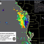 Red Tide Report, 9-11-14: No Red Tide
