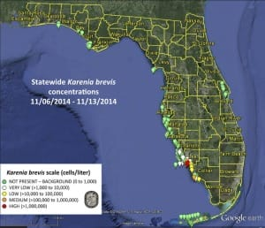 Sanibel Red Tide, Statewide Map (November 14, 2014)
