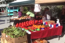 Sanibel Rentals, Sanibel Farmers Market, 3-29-15, Sundays During The Winter Months.