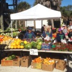 Sanibel Farmers Market This Sunday, October 2