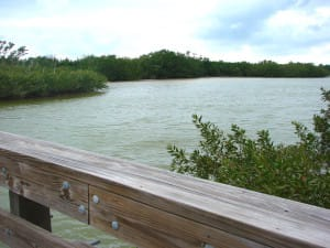 Sanibel Island, Clam Bayou By Erin, Via Creative Commons.