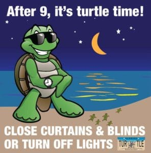 Turtle Nesting Season Begins May 1st.