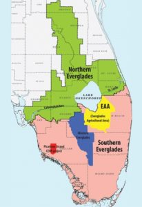 Senate Bill 10 (SB 10), Water Resources, authorizes bonding a portion of proceeds from the Land Acquisition Trust Fund (set aside by Amendment 1 in 2014) to purchase land to construct a reservoir south of Lake Okeechobee. Image courtesy of SCCF.